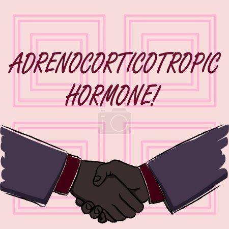 konzeptionelle Handschrift mit adrenokortikotropem Hormon. Business-Foto zeigt Hormon von Hypophyse Kortex sezerniert Geschäftsleute schütteln Hände Form der Begrüßung und Übereinstimmung.