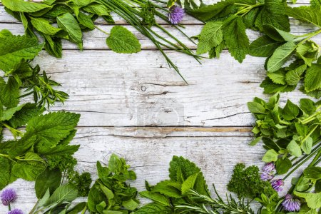 Photo for Frame with fresh and aromatic herbs on a wooden background. - Royalty Free Image