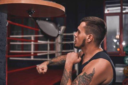 Foto de Primer plano de guapo musculoso deportista en formación en la perforación de la bola de la velocidad en el gimnasio de boxeo color de ropa deportiva - Imagen libre de derechos