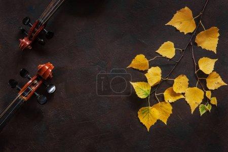 Photo pour Deux violons et une branche de bouleau avec des feuilles d'automne jaunes sur fond vintage foncé. Vue supérieure avec espace de copie - image libre de droit