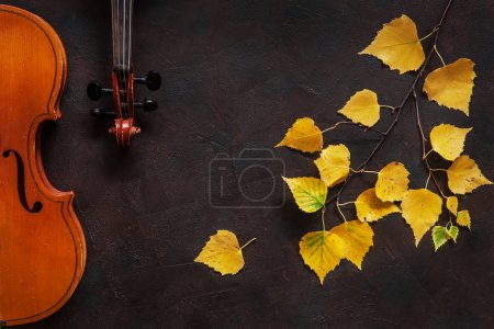 Two violins and birch branch with yellow autumn leaves on dark vintage background. Top view with copy space