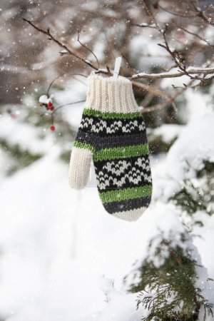 Photo for Winter decoration with mitten on tree branches with red berries - Royalty Free Image