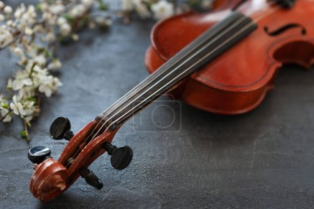 Photo for Close up of Branch of blossoming cherry and violin on grey background - Royalty Free Image