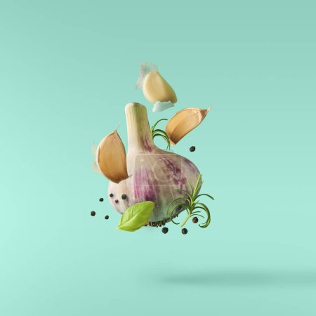 Photo for Garlic falling in air with pepper and herbs like rosemary and basil leaves on turquoise background. Spicy food concept - Royalty Free Image