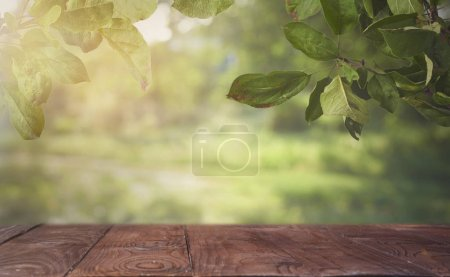 Empty brown wooden table over defocused bokeh background, can be used for display or montage your products. Mock up for display of product.