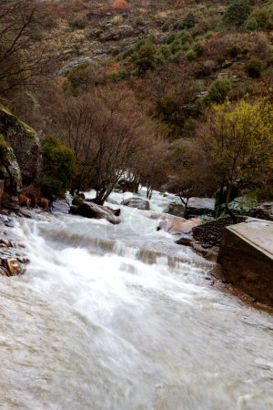 rapids of flashy clean river in mountains, amazing nature