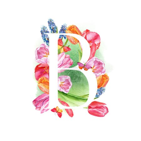 Photo pour Lettre B. Une lettre de l'alphabet avec les fleurs de printemps, tulipes de muscari, d'invitations, cartes, mariages, etc.. - image libre de droit