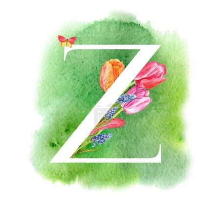 Photo pour Lettre Z. Une lettre de l'alphabet avec les fleurs de printemps, tulipes de muscari, d'invitations, cartes, mariages, etc.. - image libre de droit
