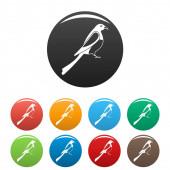 Male magpie icons set color