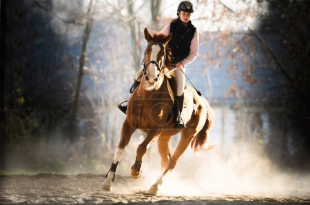 Photo for Young pretty girl riding a horse - Royalty Free Image