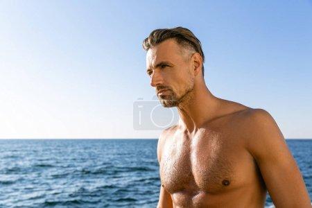 shirtless wet adult man looking away on seashore