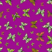 Illustration on green purple and white colors Seamless pattern Vector illustration Plaid butterfly for textile print Scribble sketch doodle
