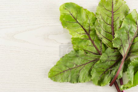 Fan of beet greens flatlay isolated on grey wood background top view fresh young leave