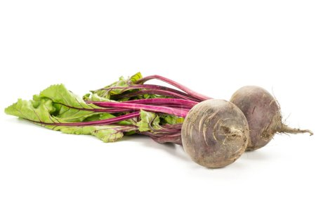Red beet with greens isolated on white background two bulbs root with fresh young leave
