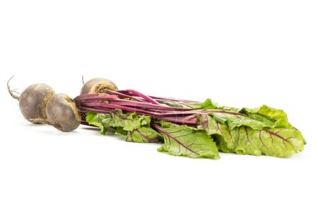 Red beet with greens isolated on white background three bulbs root with fresh leave