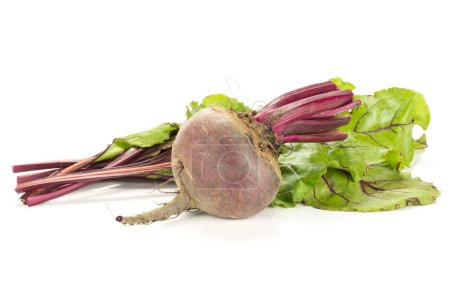 One red beet with cut tops isolated on white background one young root bulb with cut green leave
