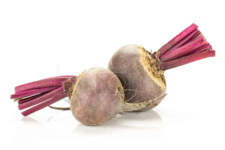 Red beet with cut tops two bulbs isolated on white backgroun