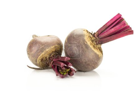 Red beet two young bulbs isolated on white backgroun