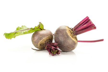 Red beet with cut tops two bulbs and green leaf isolated on white backgroun