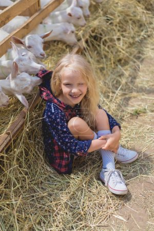 Photo for High angle view of smiling kid sitting on hay near goats behind fences at farm - Royalty Free Image