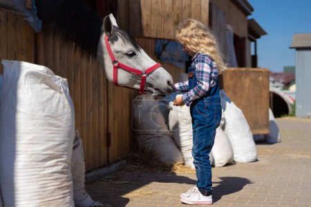 side view of kid feeding horse at farm