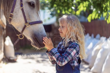side view of adorable child touching white horse at farm
