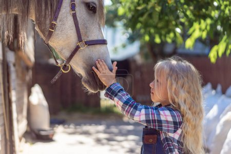 side view of child touching white horse at ranch