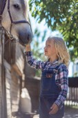 side view of pre-adolescent child touching white horse at farm