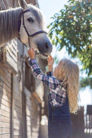 Photo pour Vue de côté de kid pour atteindre les mains au cheval blanc à la ferme - image libre de droit