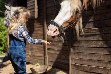 side view of kid feeding brown horse at farm