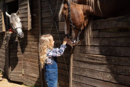 child touching brown horse at farm