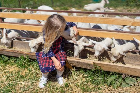 Photo for Child sitting on fence and kissing goat at farm - Royalty Free Image
