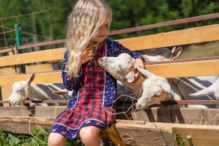 adorable child sitting on fence and palming goat at farm