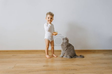 little toddler boy in white bodysuit with cookies and grey cat at home