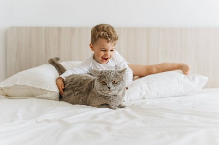 happy little child playing with grey british shorthair on bed at home