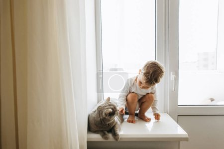 cute little child with grey british shorthair cat sitting on windowsill at home