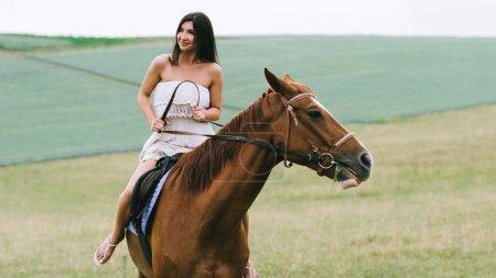 Photo pour Jolie femme cheval brun sur champ - image libre de droit