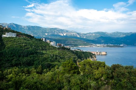 beautiful view of adriatic sea and forest in Budva, Montenegro