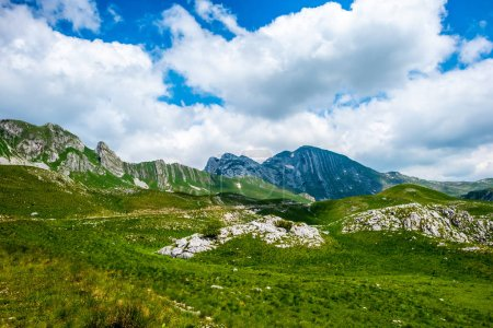 green beautiful valley, mountains and blue cloudy sky in Durmitor massif, Montenegro