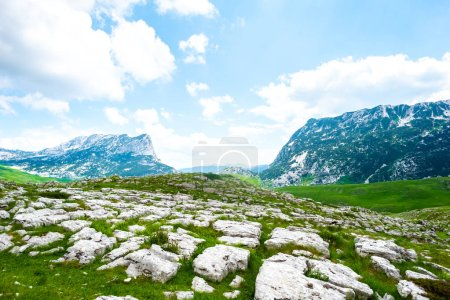 green valley with stones in Durmitor massif, Montenegro