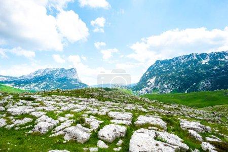 Photo pour Vallée verdoyante avec des pierres dans le massif de Durmitor, Monténégro - image libre de droit