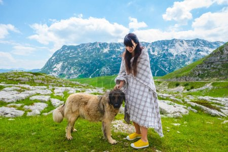 beautiful woman in blanket palming fluffy dog on valley in Durmitor massif, Montenegro