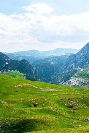 Photo for Landscape of green valley and mountains in Durmitor massif, Montenegro - Royalty Free Image