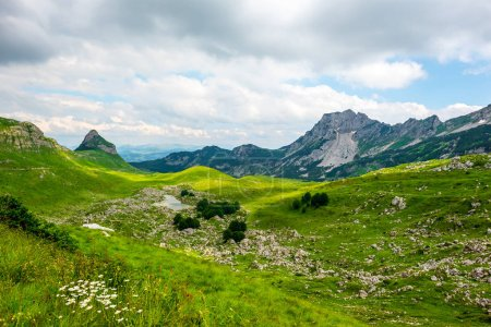 beautiful green valley with small stones in Durmitor massif, Montenegro