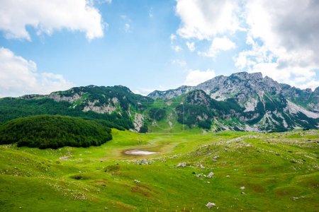 beautiful green valley in Durmitor massif, Montenegro