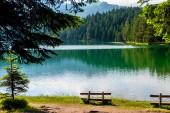 """Постер, картина, фотообои """"скамейки на побережье красивые Черное озеро в Черногории"""""""