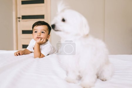 Photo for Adorable little child spending time with bichon dog in bedroom - Royalty Free Image