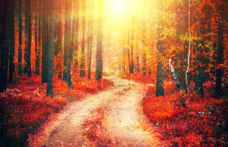 Photo for Autumn nature scene. Fantasy fall landscape. Beautiful autumnal park with pathway and old trees - Royalty Free Image