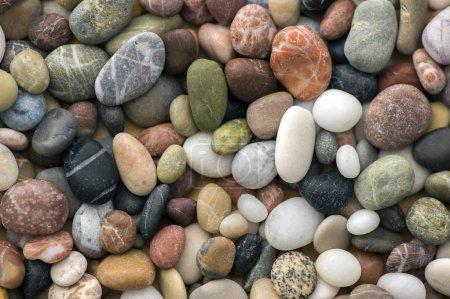 Photo pour Petits cailloux colorés fond, simplicité, lumière du jour, pierres - image libre de droit