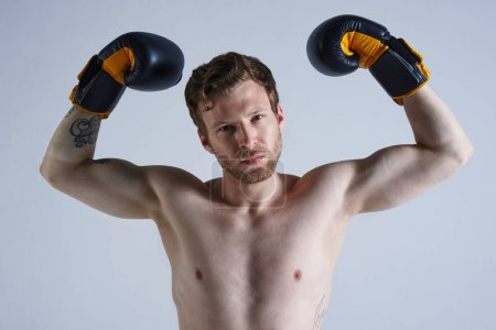 Photo for Close up portrait of handsome confident young unshaven Caucasian boxer wearing boxing gloves, standing against blank studio wall background, raising fists, demonstrating his muscular arms and torso - Royalty Free Image